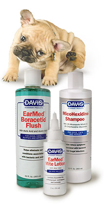 Ear Problems, Yeast, and Mites - Happy Dog Naturals